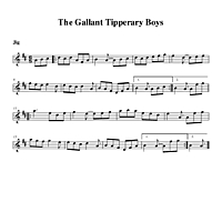 09-19_The_Gallant_Tipperary_Boys-Jig.pdf