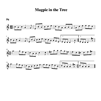 01-04_Magpie_in_the_Tree-Jig.pdf