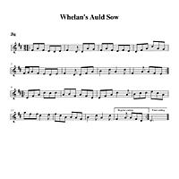 05-30_Whelans_Auld_Sow-Jig.pdf