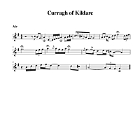 08-33_Curragh_of_Kildare-Air.pdf