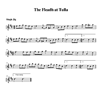 02-28_The_Fleadh_at_Tulla-Single_Jig.pdf