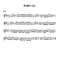 02-18_Bridies_Joy-Reel.pdf