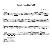 05-21_Small_Fox_Big_Field-Reel.pdf