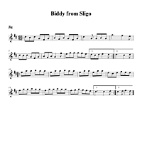 10-23_Biddy_from_Sligo-Jig.pdf
