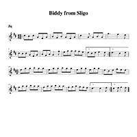 10-23_Biddy_from_Sligo-Jig.pdf